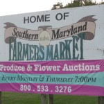 Sold! Save Big on Vegetables at a Produce Auction