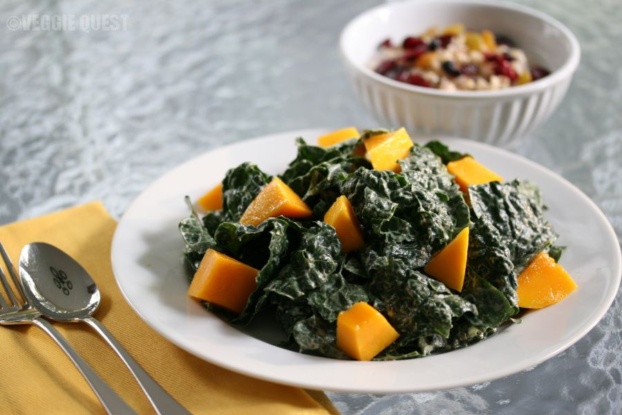 Plant-Based Diet Resources