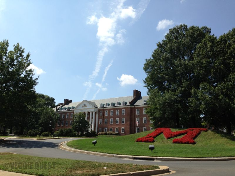 Maryland-M-Watermarked