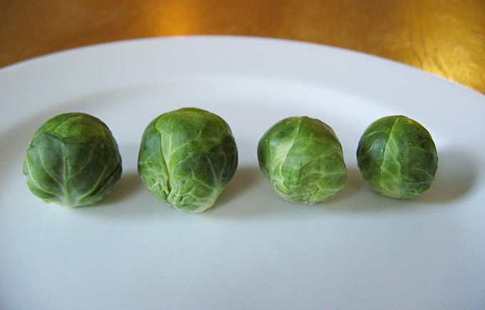 Brussels-Sprouts-4-Row