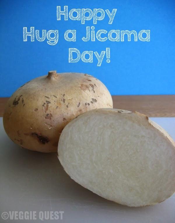 Jicama-Veggie-Quest_HugAJicama_cropped