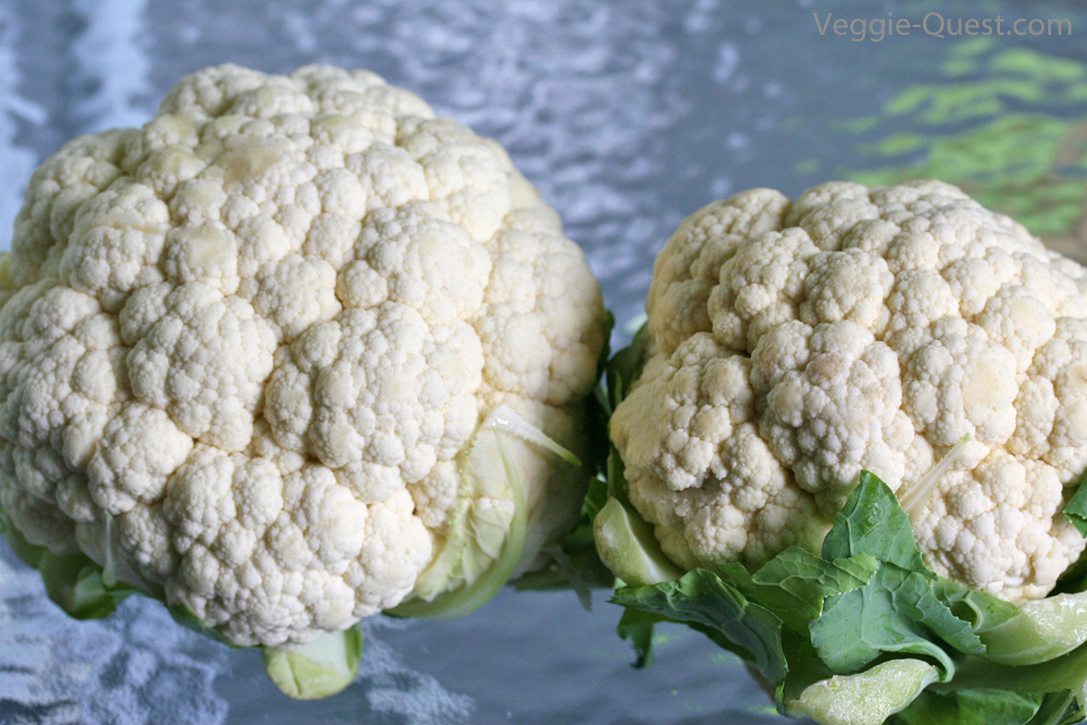 Cauliflower comparison