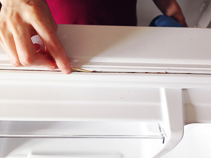 6a - How to Clean Your Fridge