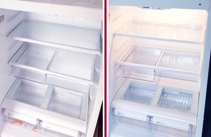 Before-and-After---How-to-Clean-Your-Fridge