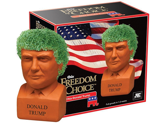 Trump Chia Pet from Amazon