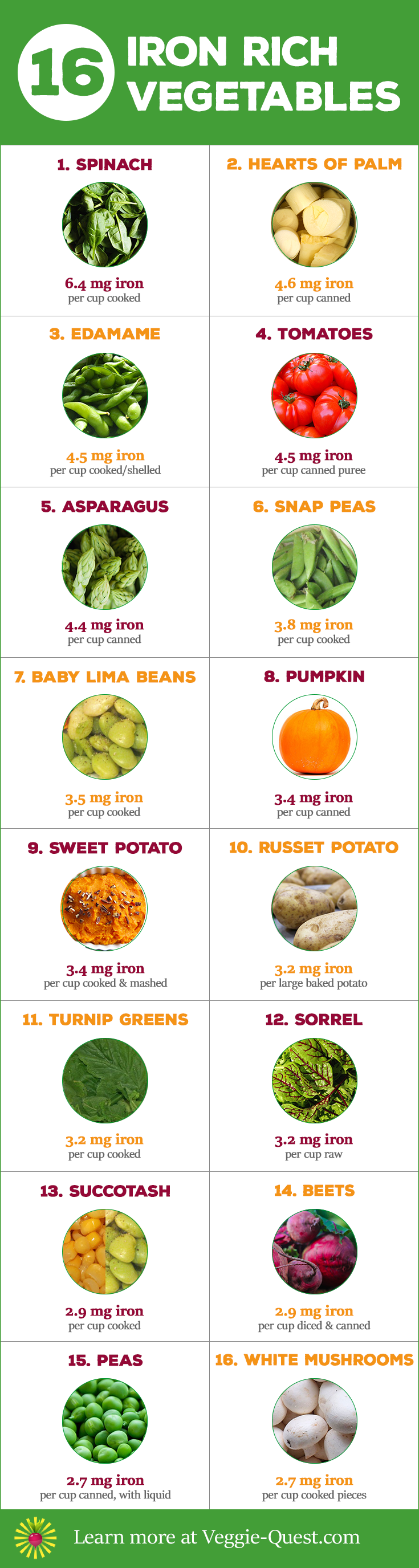 16 iron rich vegetables pump up your health with 16 iron rich veggies learn more at workwithnaturefo